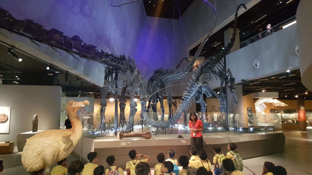 Science Learning Journey to LKC Natural History Muesum.jpg